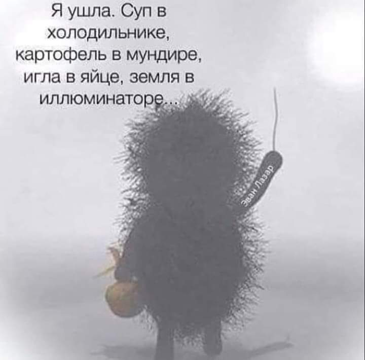 http://s5.uplds.ru/Rw3CA.jpg