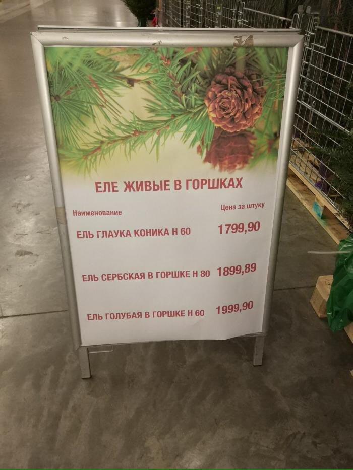 http://s5.uplds.ru/YhVzB.jpg