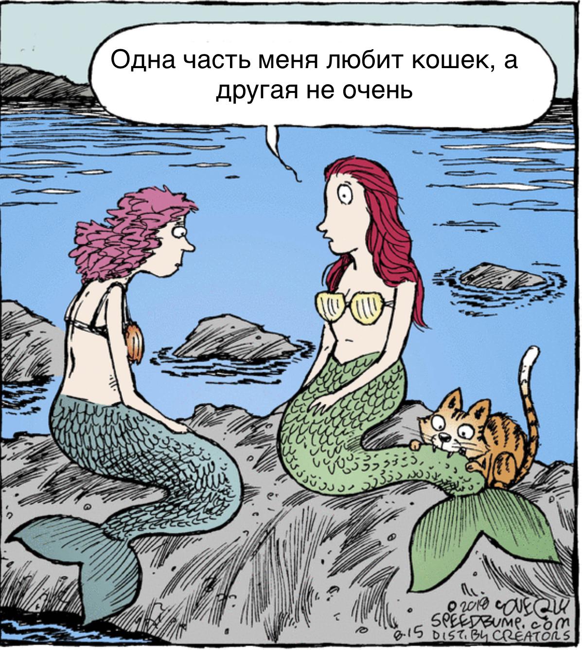 http://s5.uplds.ru/bEAVh.jpg